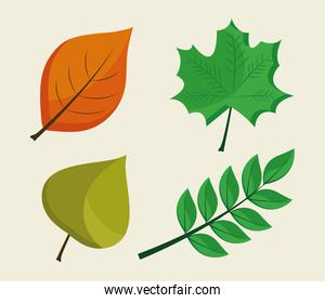 bundle of four leafs plants flat style icons