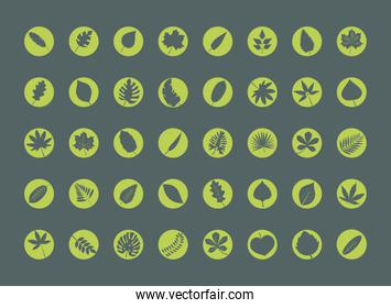bundle of fourty leafs plants silhouette style icons