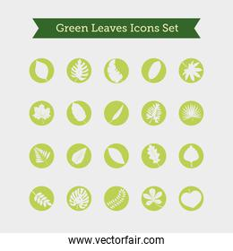 bundle of twenty leafs plants and lettering in ribbon silhouette style icons