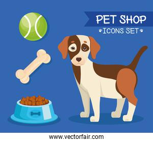 bundle of four pet shop icons and lettering