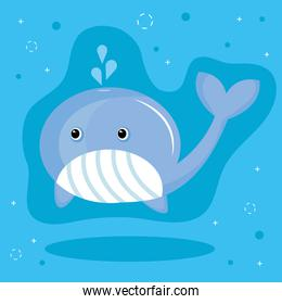 cute little whale animal kawaii character in blue background
