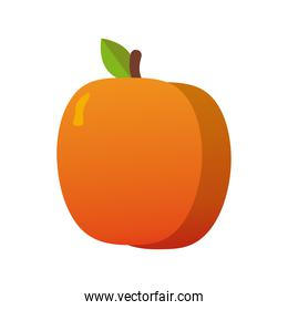 peach fresh delicious fruit isolated style icon