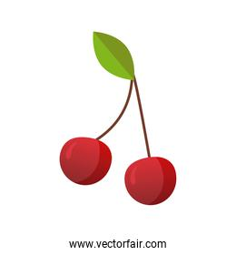 cherries fresh delicious fruit isolated style icon