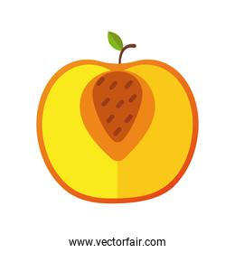 apple fresh delicious half fruit isolated style icon