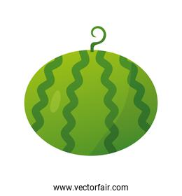 watermelon fresh delicious fruit isolated style icon