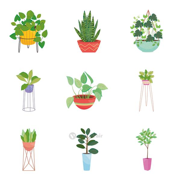icon set of house plants, colorful design