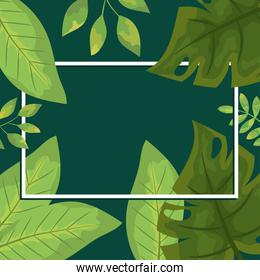 decorative design of green leaves and rectangle frame, colorful design