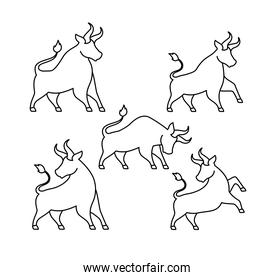 set of bulls icons on a white background