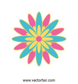 pink and blue flower icon vector design