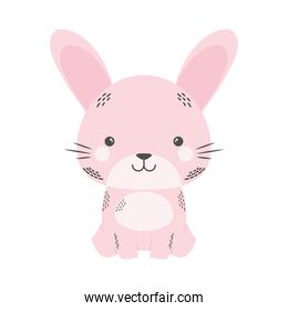 cute rabbit animal comic character