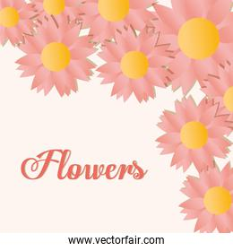 flowers lettering with set of sunflowers with a ligth pink color