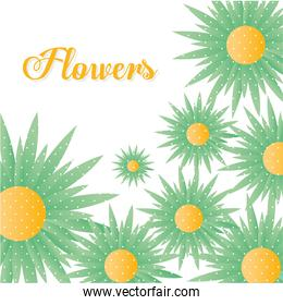 flowers lettering with set of sunflowers with a green color