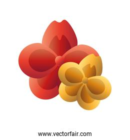 red and gold flowers vector design