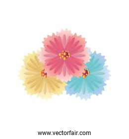 pink yellow and blue flowers vector design