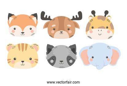 cute six animals comic cartoon characters