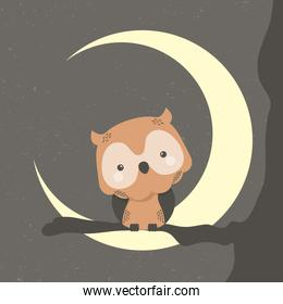 cute owl animal in crescent moon comic character