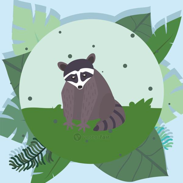 taccoon with jungle leaves vector design