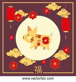 Chinese new year 2021 pig with lanterns and flowers vector design