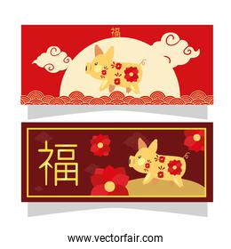 Chinese new year 2021 pig with red flowers in frames vector design