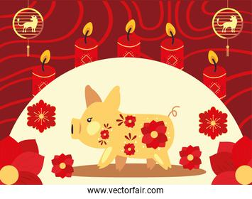 Chinese new year 2021 pig with red flowers and candles vector design