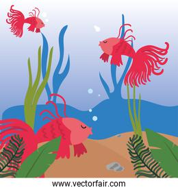 Fishes animals at sea with algae vector design