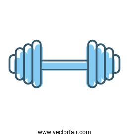 dumbbell with a blue color