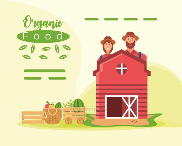 organic food farmer people barn with fruits and fresh vegetables