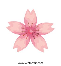 pink flower garden plant decoration icon