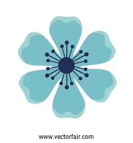 blue flower garden plant decoration icon