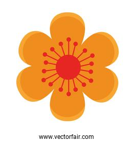 yellow flower garden plant decoration icon