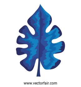 tropical blue leaf plant ecology nature icon