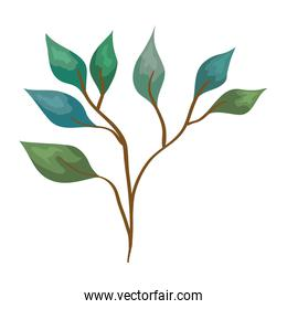 branch with leafs plant green ecology icon
