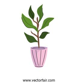 house plant in ceramic pot pink icon