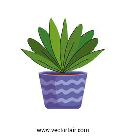 house plant in ceramic pot purple color with waves icon