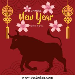 happy new year 2021 lettering card with ox silhouette