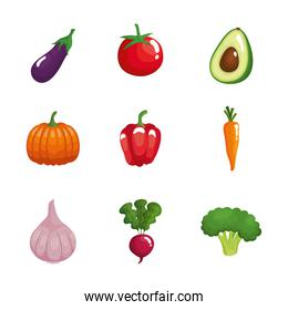 bundle of nine vegetables healthy food set icons