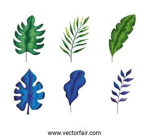 bundle of six leafs and branches set icons