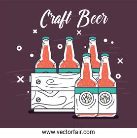 craft beer bottles box vector design