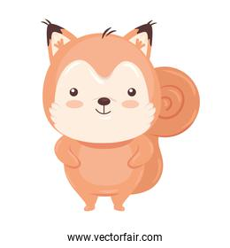 Kawaii squirrel animal cartoon vector design