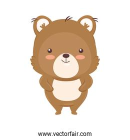 Kawaii bear animal cartoon vector design