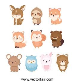 Kawaii animals cartoons icon set vector design