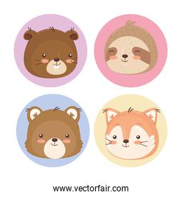 Kawaii animals cartoons icon collection vector design