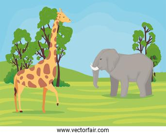 giraffe and elephant african animals wild in the camp