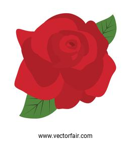 red rose and green leaves, flat style
