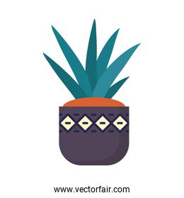 decorative plant in a pot, flat style