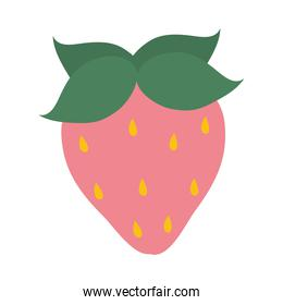 strawberry fruit hand drawn icon, colorful design