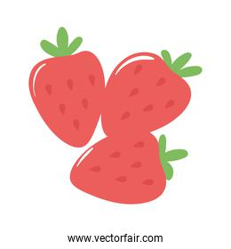 strawberry fruits appetizing delicious food, icon flat on white background