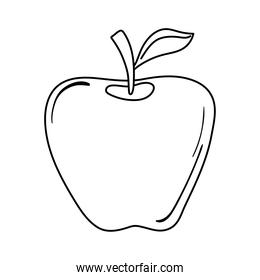 apple fruit fresh appetizing delicious food, icon line style