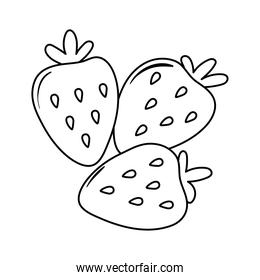 strawberry fruits appetizing delicious food, icon line style