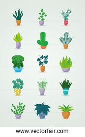 beautiful plants in a pots icon set, colorful design